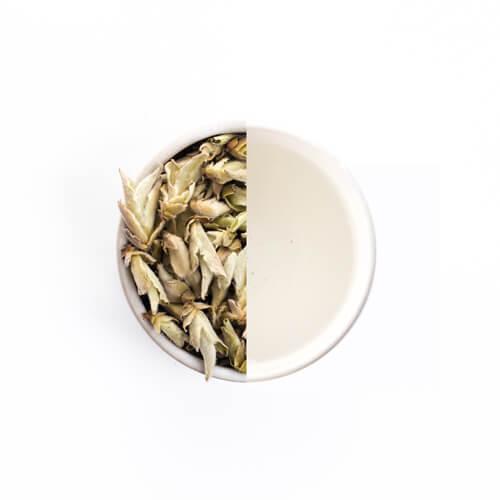 Puerh bai ya theebladeren en theeknoppen in een wit theekopje met pure biologische thee