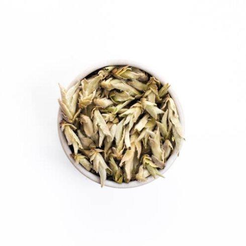 Biologische theebladeren en theeknoppen van de baiya puerh thee van Mevrouw Cha in een wit theekopje.