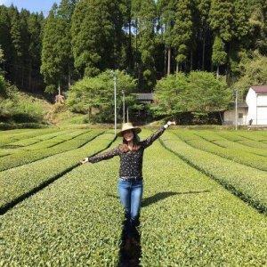 Theesommelier Linda tijdens theereis in biologische theeplantage in Japan