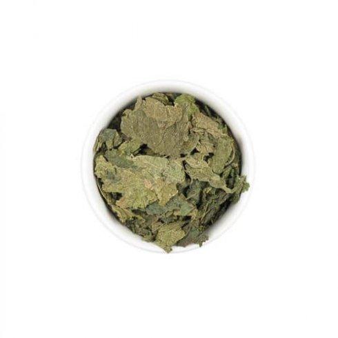 Biologische brandnetel theebladeren in een wit theekopje.